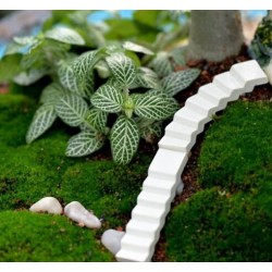 Moss Fairy Garden Micro Landscape Miniature Garden Fairy Garden Decoration Fairy Garden Accessories  Small Road  Stairs  Ladder  Corridor Steps  DIYResin Fairy Garden Decoration Fairy Garden Accessories Resin Arts and Crafts