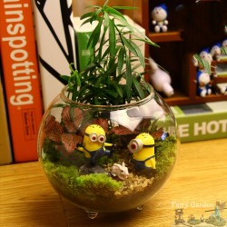 12 Different DIY Fairy Garden Terrarium Kits Idea