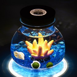 12 DIY Led Bottle Terrarium Fairy Garden Idea Container Plant Garden