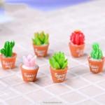 1pcs Cute Mini Succulent Cactus Plant Decor DIY Resin Crafts Fairy Garden Miniatures Ornament Terrarium Figurines Decor