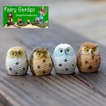 Fairy Garden Micro Landscape Miniature Garden Fairy Garden Decoration Fairy Garden Accessories  FeatherOwls  4  Colour  Desktop Toy Figurine Fairy Garden Decoration Fairy Garden Accessories  Succulent Plants Fairy Garden Decoration Fairy Garden Accessori